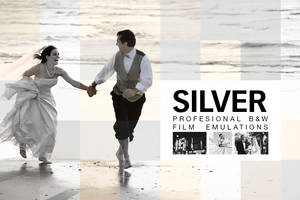 Silver by SparkleStock by pstutorialsws