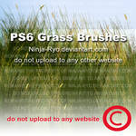 PS6 BRUSHES - Grass