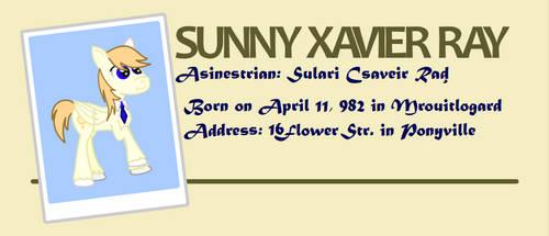 Sunny Ray's resume