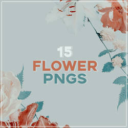 15 Flower Pngs by Foxy159200