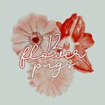 12 Flower Pngs