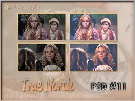 PSD 11 | True North