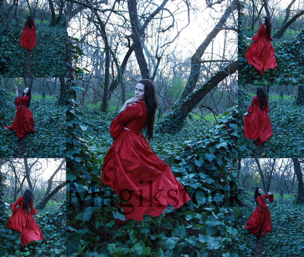petit chaperon rouge set 1 by magikstock