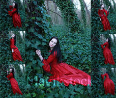 petit chaperon rouge set 2 by magikstock
