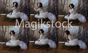 Birdset2magikstock