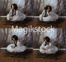 Birdset5magikstock by magikstock