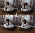 Birdset5magikstock