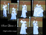 Snow Queen 1 stock pack by Mithgariel-stock