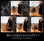 Witch Queen and her Pet 2