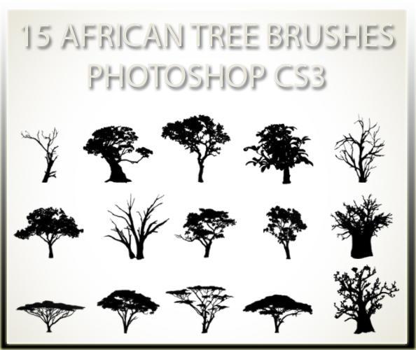 تحميل فُرش African-Tree-Brushes 15_african_tree_brus