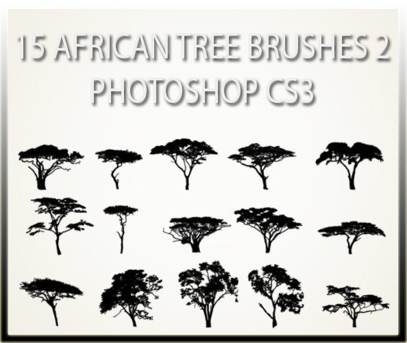 15 African Tree Brushes 2 CS3