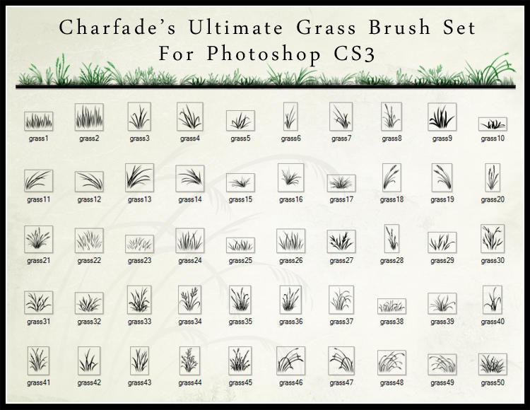 Brush Grama The_Ultimate_Grass_Brush_Set_by_charfade