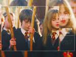 quidditch | PSD
