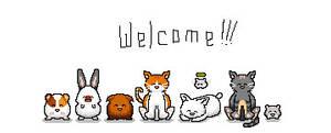 Pets Pets Pets - 'Welcome'