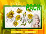 |Pack|+  Vectores +