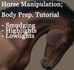horse manipulation, body prep. by PoeticJustice314