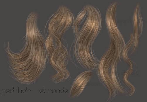 PSD HAIR STRANDS 8
