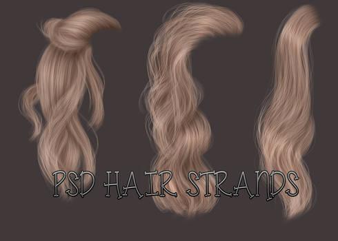 PSD HAIR SRANDS 11