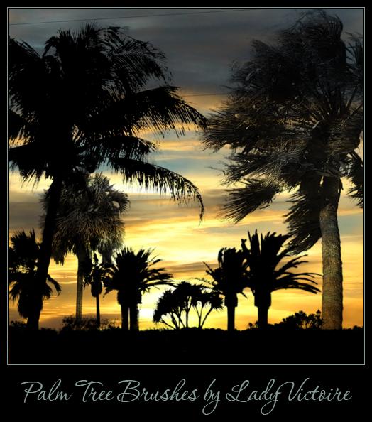 Palm Tree Brushes