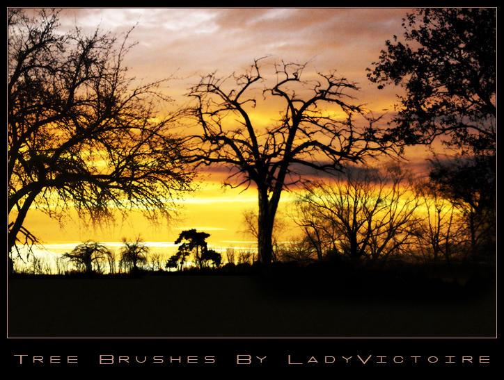 Tree Brushes 1 by LadyVictoire-Brushes
