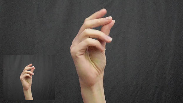 Hand movement #001 - snap (video reference)
