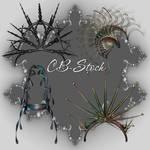 CB-Stock-Fantasy-07
