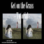 Get on the Grass Tutorial