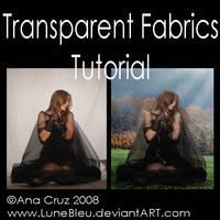 Transparent Fabrics Tutorial by Lune-Tutorials