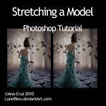 Stretching a Model - Tutorial