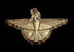 3D Bird Symbol of Burst of Life