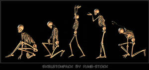 Skeleton_pack1