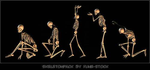 Skeleton_pack1