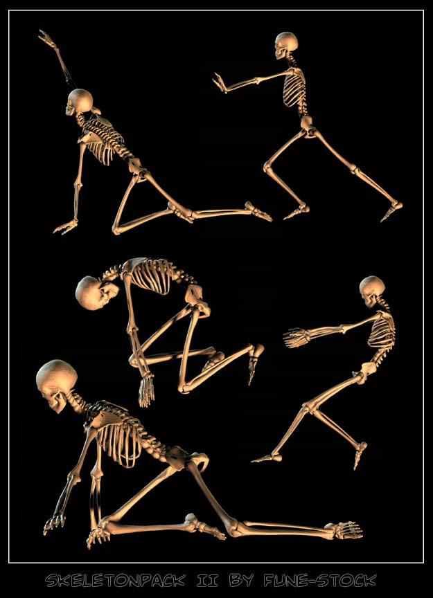Skeleton_pack2 by Fune-Stock