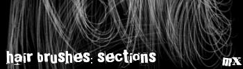Hair Brushes: Sections