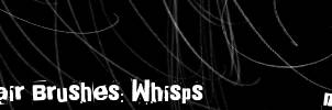 Hair Brushes: Whisps