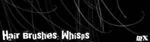 Hair Brushes: Whisps