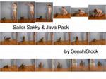 Sakky + Java Pack