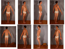 Free 3D Model Reference Pack M - Pose 2 by SenshiStock