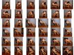 SenshiStock Chair Pack