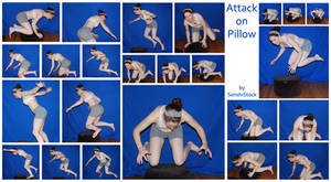 Attack On Pillow by SenshiStock