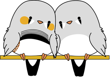 Zebra Finch Animation