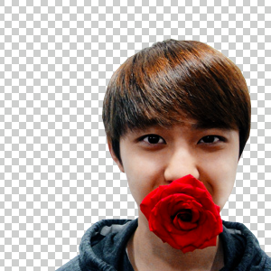 PNG D.O Exo by piibubble141