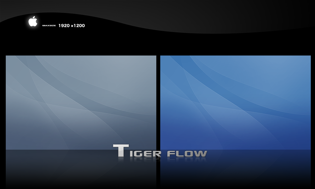 Tiger Flow by xipx