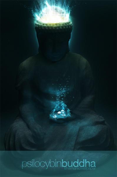 psilocybin buddha wallpaper by dEGOnstruction