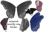 Butterfly Wing Brushes