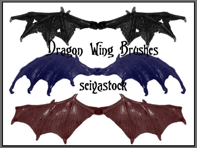 Dragon Wing Brushes by seiyastock