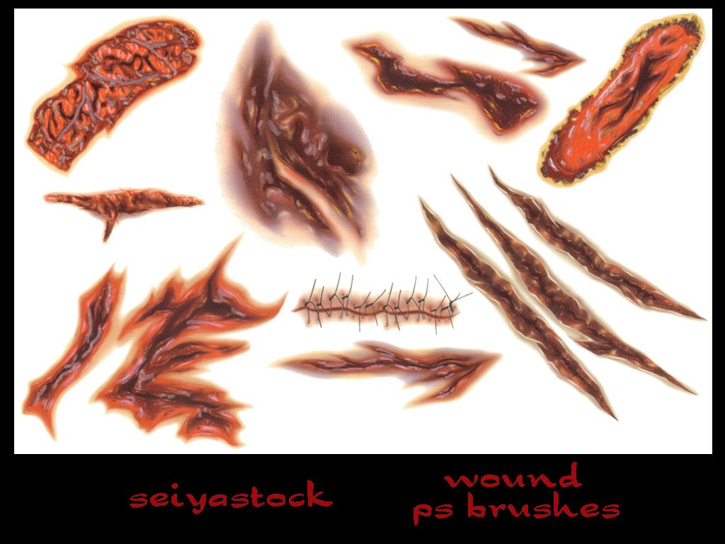seiyastock wound ps brushes