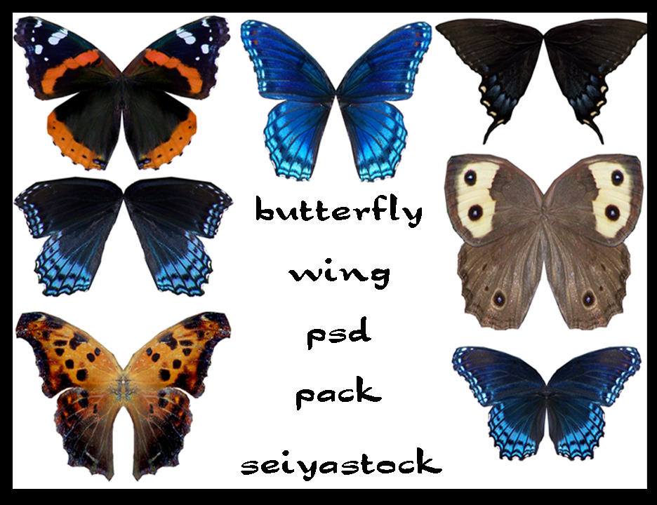 seiyastock psd butterfly wings by seiyastock