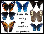 butterfly-wing ps brushes