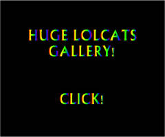 LOLcats gallery by ZEGMAN
